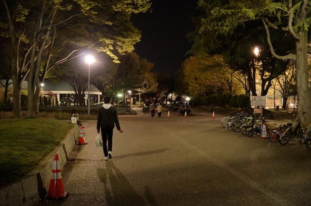 名城公園 夜桜