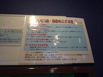 竹島水族館 プロトプテルス・エチオピクス