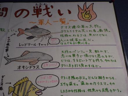 竹島水族館 竹狭間の戦い