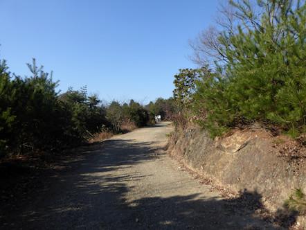 パノラマ展望台 林道