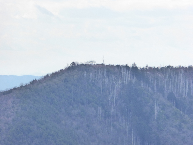 向山見晴台からの眺め
