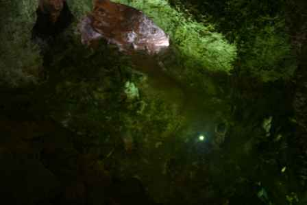 Lower Cave, Carlsbad Caverns