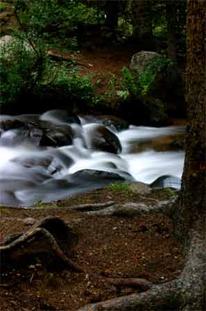 Waterfall in Colorado near Mt. Evans