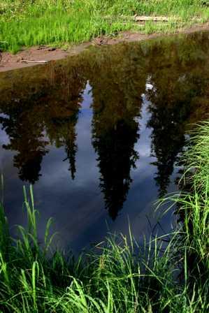 Kawuneeche Valley - Colorado River Headwaters