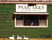 Plug Ugly