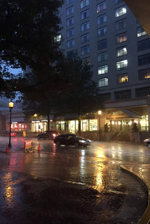 a little rain in bethesda, maryland