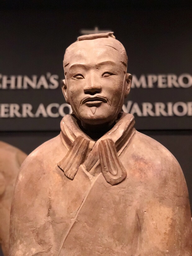 Terracotta warriors exhibit at the world museum in Liverpool, uk