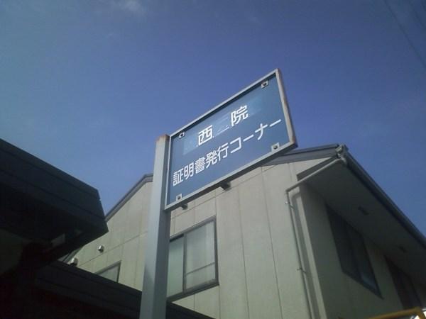 PAP_0232.jpg