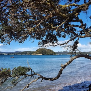 Paihia New Zealand