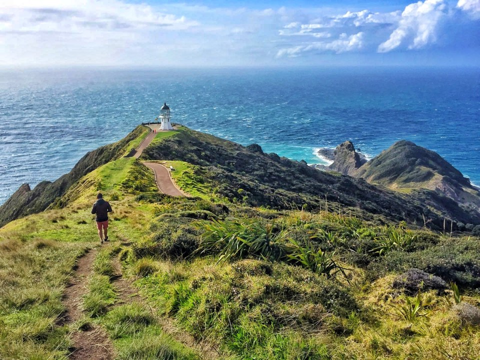 exploring the north island of New Zealand