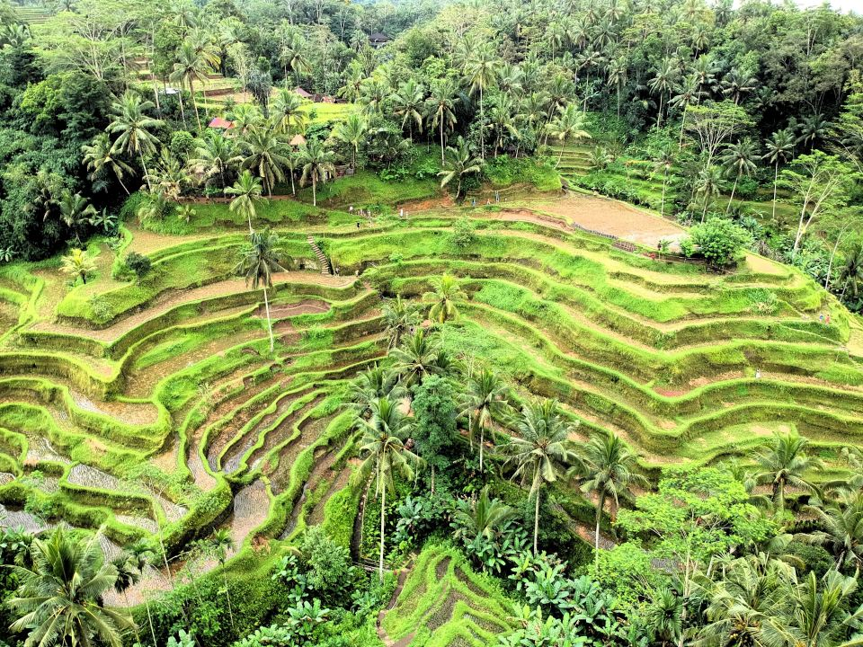what to see in ubud