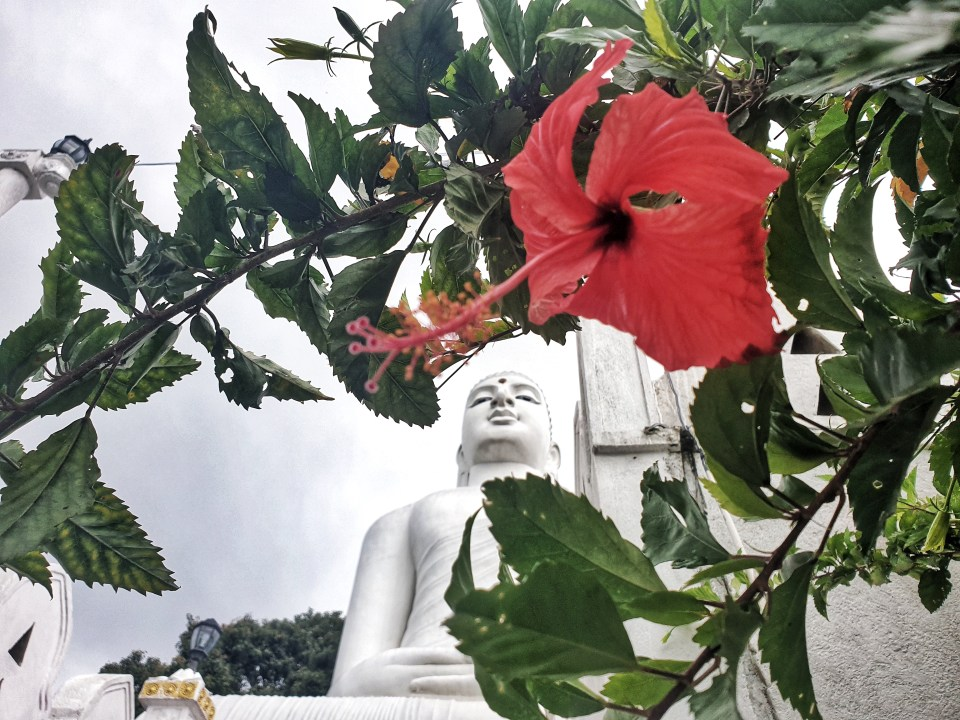 Big Buddha, Kandy, Sri Lanka