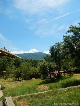 În depărtare - munții Tarcu