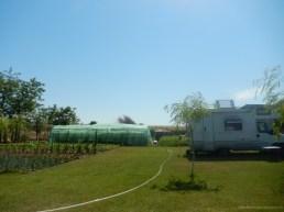 Camping Dan Pescarul