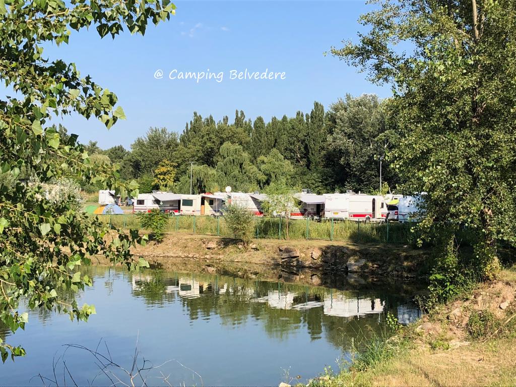 Camping Belvedere, Clinceni, județul Ilfov, strada Carierei, nr. 58 // GPS : Lat 44.3752 long 25.9648 // site : https://campingbucuresti.ro // email : hello@campingbucuresti.ro // tel. : +40 743 755 822