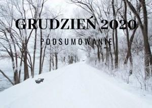 Grudzień 2020 – podsumowanie