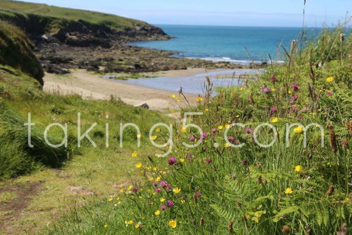 Beach Escape in Pembrokeshire