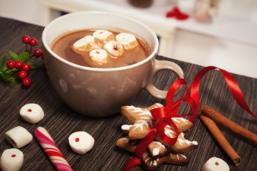 Hot chocolate and gingerbread cookies for Christmas