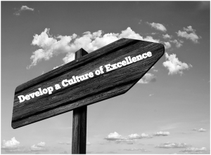 Moving Towards a Culture of Excellence
