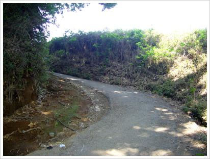 hachioji-slope.jpg