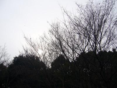 kyonpark6.jpg