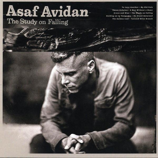 Asaf Avidan - The Study On Falling - vinyl record