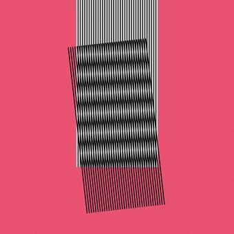 Hot Chip - Why Make Sense? - vinyl record