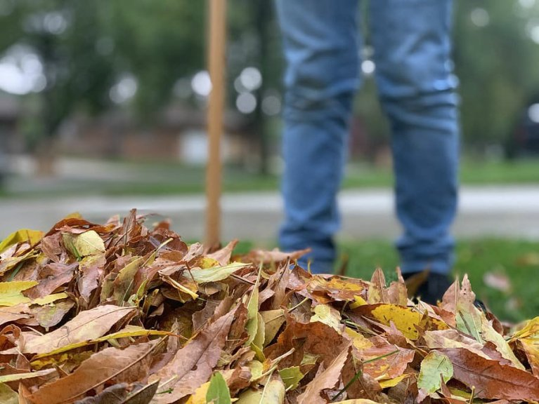 Takoma Park Creates Tracking System to Verify Collected Leaves Are Delivered to Compost Pile