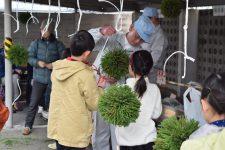 ミニ杉玉作り