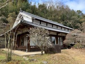 山添村の古民家と白梅