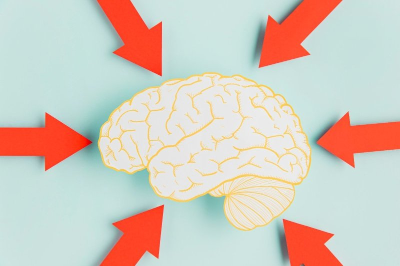 как тренировать память взрослому человеку