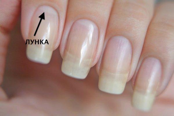лунки на ногтях