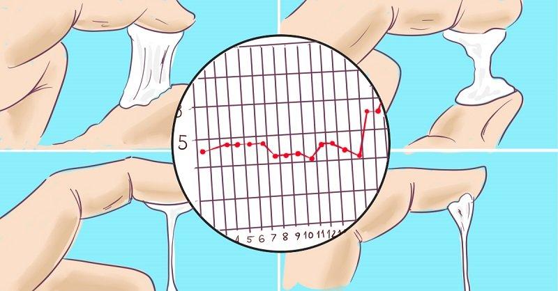 самые первые признаки беременности до задержки