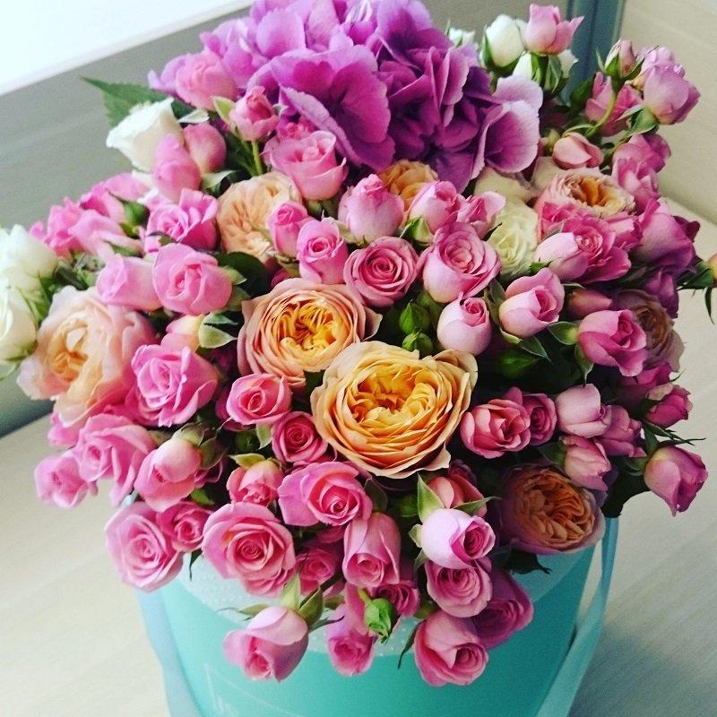 количество цветов
