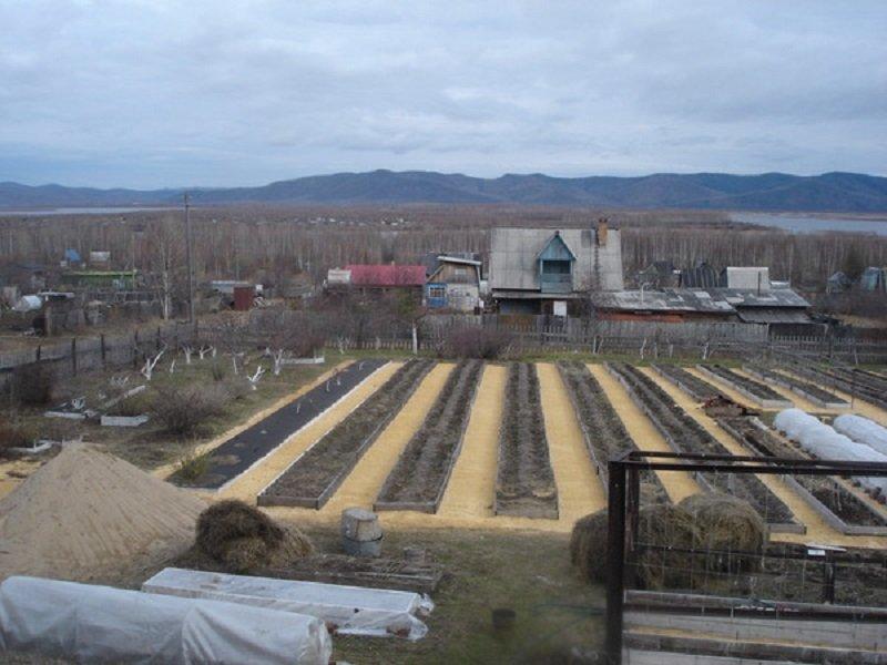 как повысить урожайность