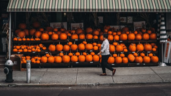 pumpkin display halloween