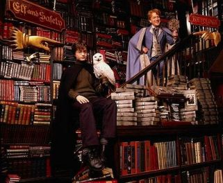 harry-hedwig-and-gilderoy