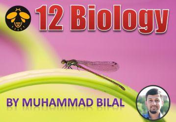 12 Biology at GKRSC