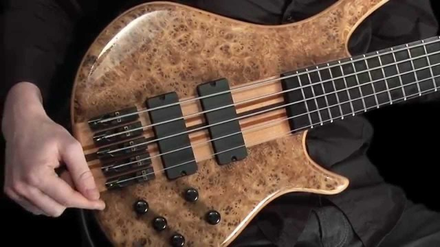 Learn How To Play Bass
