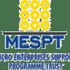 MICRO ENTERPRISES SUPPORT PROGRAMME TRUST (MESPT)