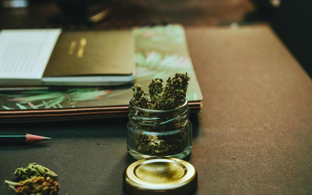 What decriminalisation of cannabis means for the workplace