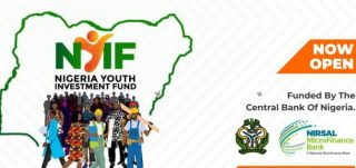 Nigerian youth investment fund link to apply