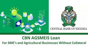 Agriculture loan with no collateral