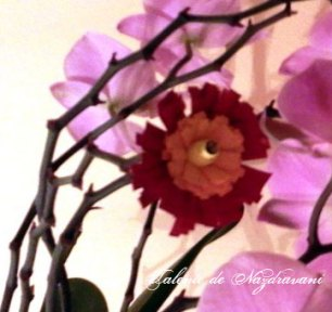 Quilling - flori franjurate