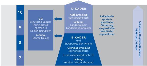 Organisationsstruktur der Anschlussmaßnahmen