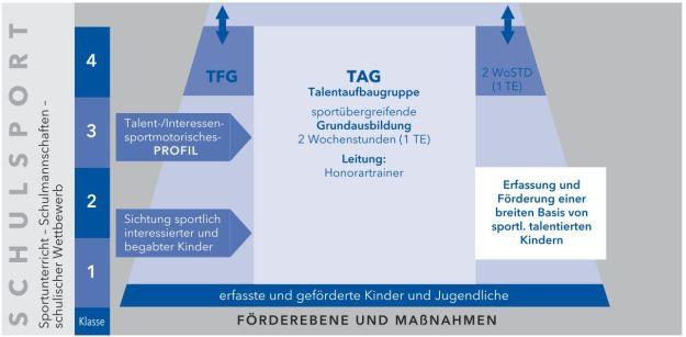Organisationsstruktur der Talentaufbaugruppen (TAG)