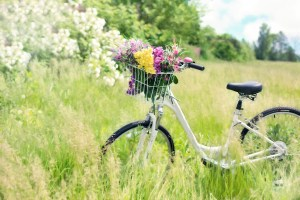 bicycle-788733_1920