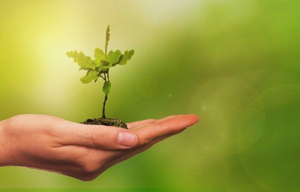 Crecimiento verde