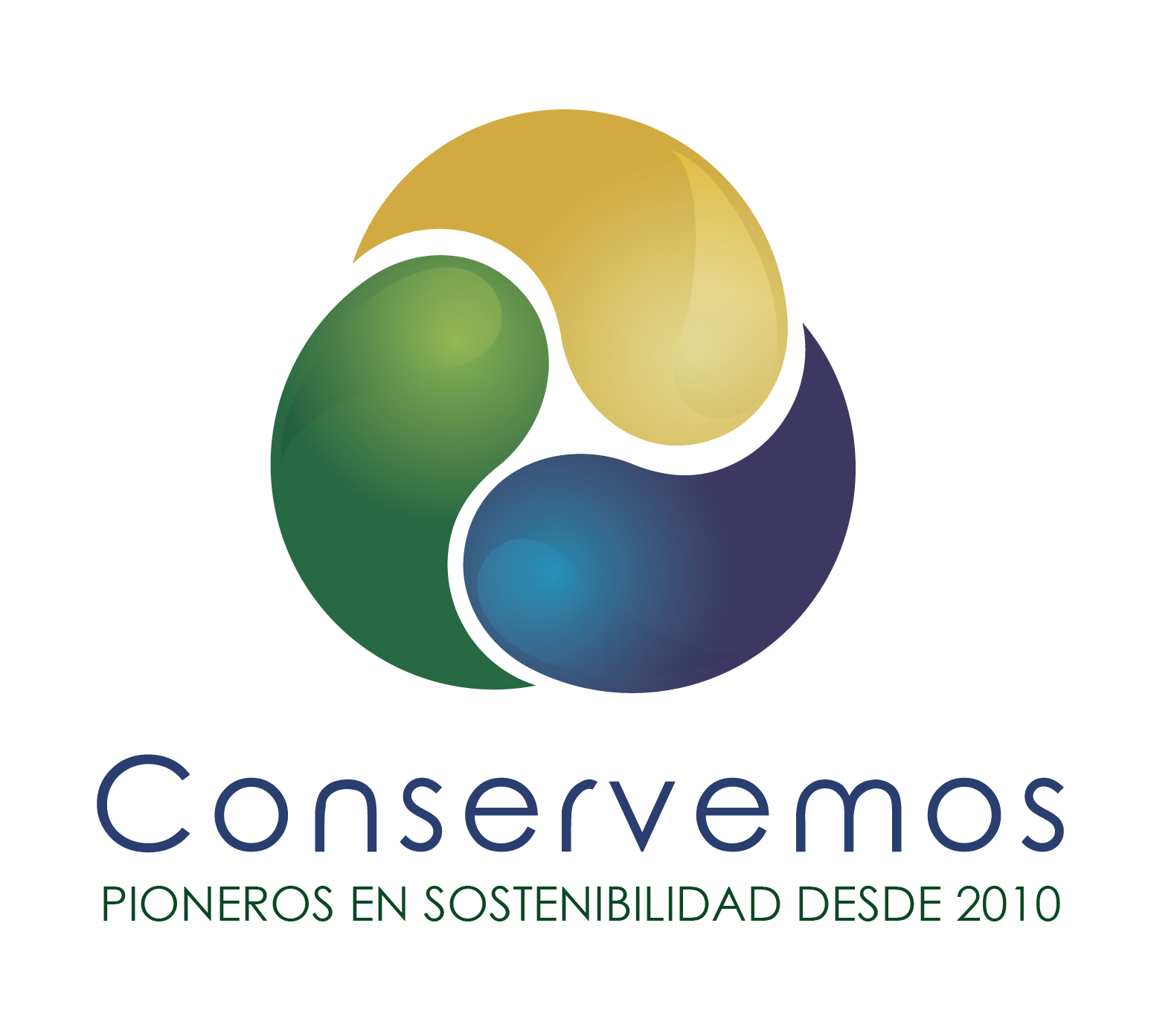 COORDINADOR DE MARKETING Y MERCADEO