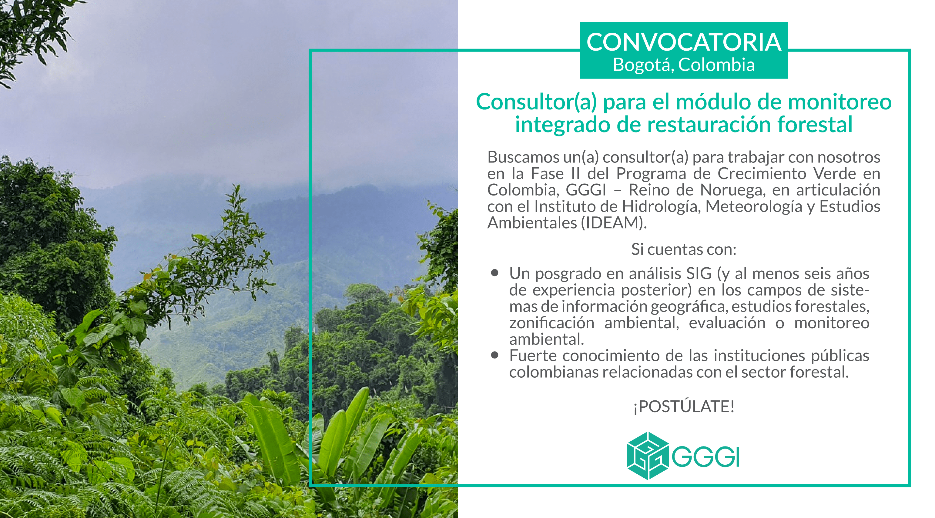 Integrated Forest Restoration Monitoring Module Consultant